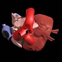 Come migliorare la gittata cardiaca attraverso esercizi di respirazione