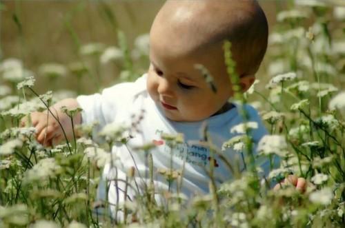 Vitamine naturali per neonati e bambini piccoli